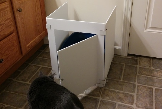 Gray cat sniffing cardboard cat litter box stall.