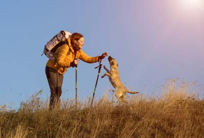 Female hiker in yellow jacket gives a dog a treat on top of hill.