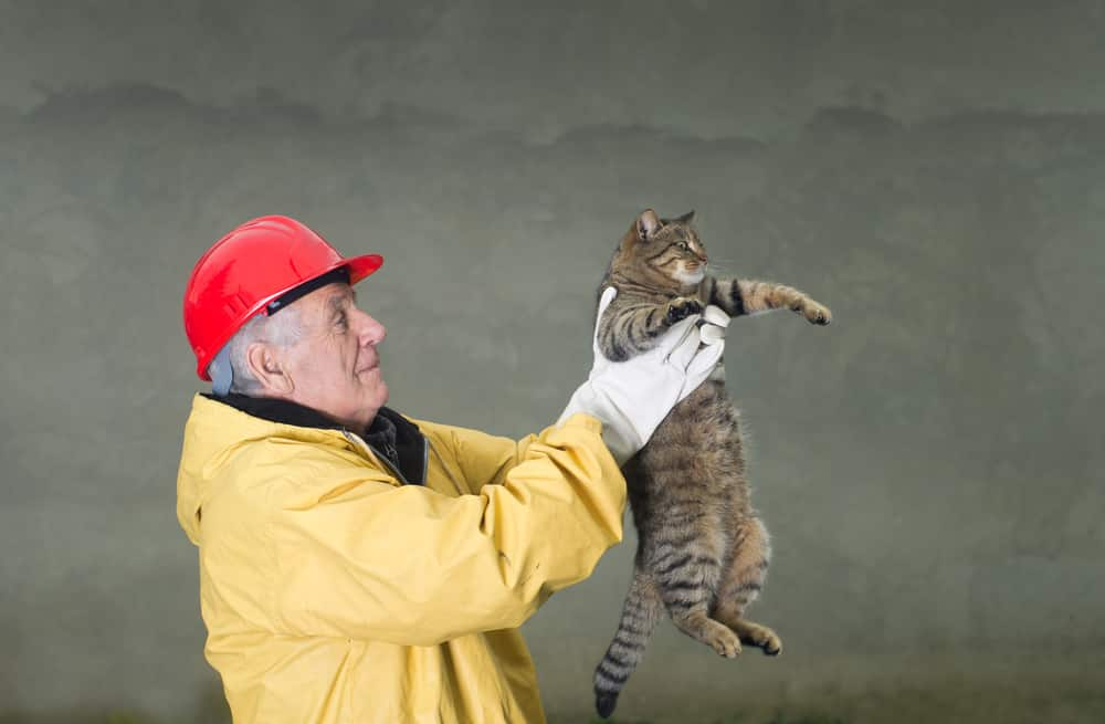 Old man in safety suit holds cat with his arms