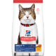 sd-feline-adult-7-plus-dry